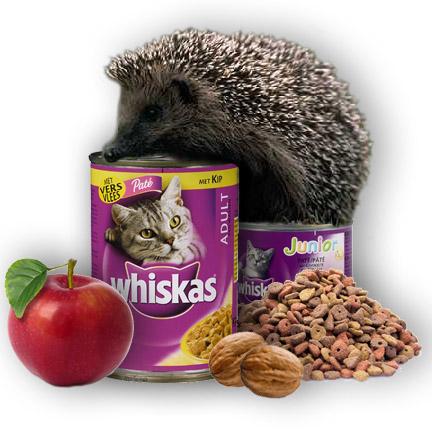 voedsel voor egel