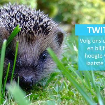 Volg ons op Twitter!
