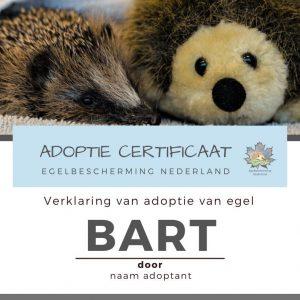 Adoptie cadeaupakket met certificaat en knuffel
