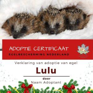 Adoptie cadeaupakket met certificaat en knuffel Kersteditie